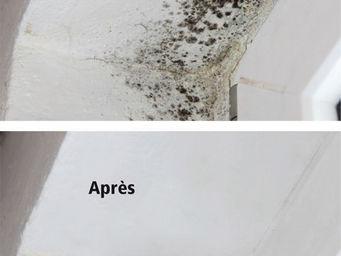 WATCO FRANCE - peinture anti-moisissure - Peinture Pour Plafond