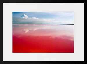 PHOTOBAY - sanguine - Photographie