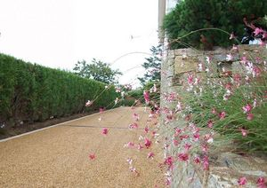 DANIEL MOQUET Signe vos All�es -  - Jardin Paysager