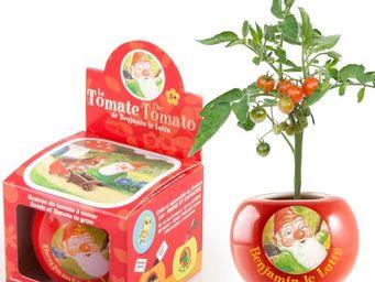 Radis Et Capucine - benjamin le lutin et ses graines de tomate-cerise - Potager D'intérieur