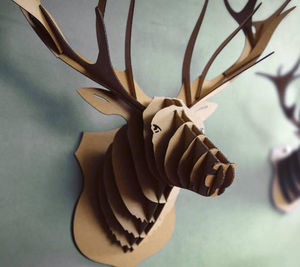 CASA ALBERT - animatomy - Trophée De Chasse