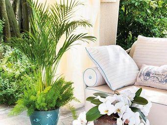 DEROMA France - primroses - Cache Pot