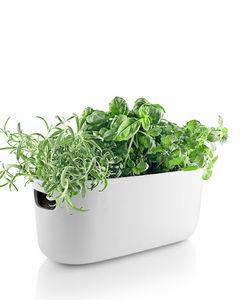 EVA SOLO - herb organiser - Potager D'intérieur