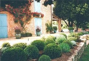 Claire Pernod Fantini - un th�me proven�al - Jardin Paysager