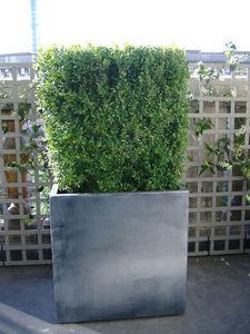 ATELIER SO GREEN - icc60 - gamme matiere - finition zinc - Bac À Fleurs