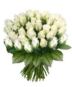 FOLIFLORA -  - Composition Florale