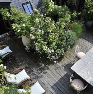 LB ARCHITECTE -  - Terrasse Am�nag�e