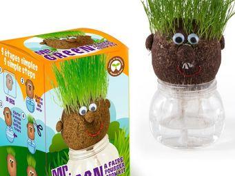 Radis Et Capucine - mr green et sa drôle tête à pousser - Potager D'intérieur