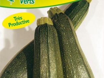 LES DOIGTS VERTS - semence courgette diamant hyb f1 - Semence