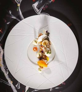 Vista Alegre - chefs' collection - Assiette Calotte