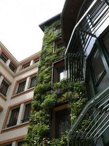 Greenwall -  - Mur Végétalisé