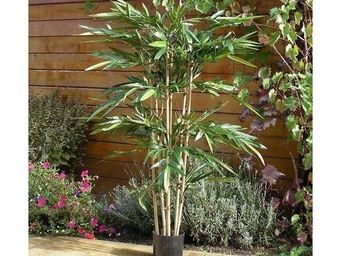 Deco Factory - bambou artificiel n�pal en pot - Arbre Artificiel
