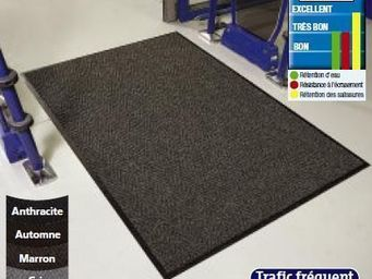 WATCO FRANCE - tapis grattant - Passage