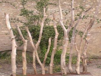 DECO-NATURE - paravent bois flott� - Claustra