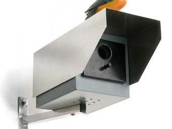 Donkey - maison pour oiseaux caméra de surveillance - Maison D'oiseau