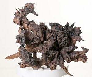 COLLECTION EMERGENCES - le kraken - Sculpture Végétale