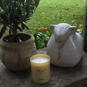 Christian Tortu Bougies - christian tortu - provence l'hiver - Bougie Parfumée