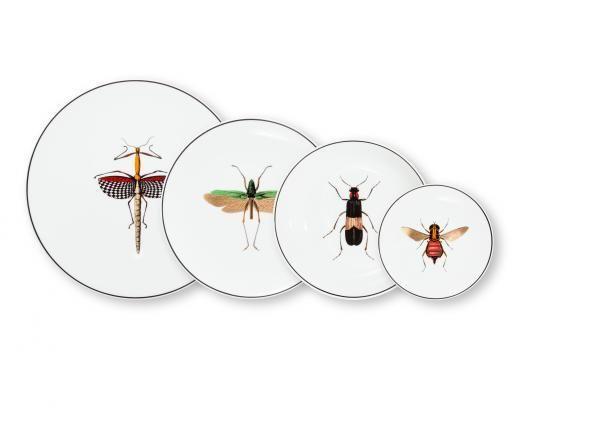 ANIMAL FABULEUX - Assiette décorative-ANIMAL FABULEUX