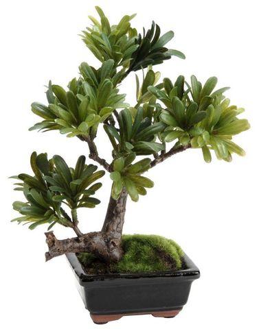 Amadeus - Fleur artificielle-Amadeus-Bonsaï podocarpus 23cm