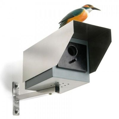 Donkey - Maison d'oiseau-Donkey-Maison pour oiseaux Caméra de surveillance