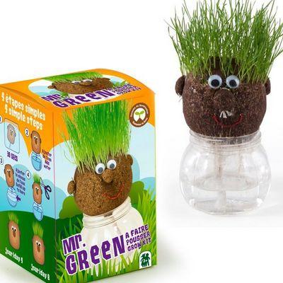 Radis Et Capucine - Potager d'intérieur-Radis Et Capucine-Mr Green et sa drôle tête à pousser