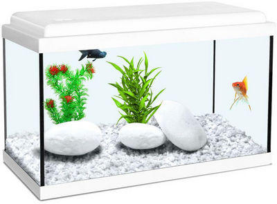 ZOLUX - Aquarium-ZOLUX-Aquarium enfant blanc 18L