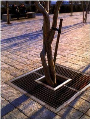 Ace Mobilier Urbain - Grille d'arbre-Ace Mobilier Urbain