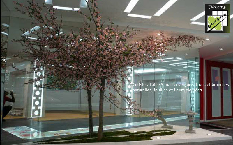 Decors Nature Potted tree Trees & plants Flowers and Fragrances Workplace | Cottage