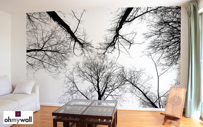 Ohmywall Wallpaper Wallpaper Walls & Ceilings  |