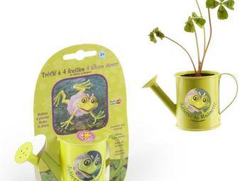 Radis Et Capucine - un arrosoir pour faire pousser son trèfle porte-bo - Interior Garden