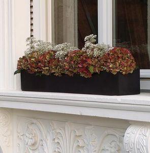 amei -  - Flower Box