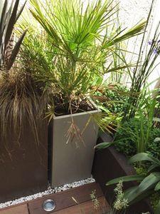 IMAGE'IN -  - Tree Pot
