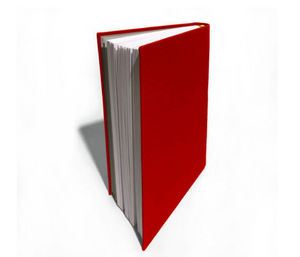 Papier Plus - grand carnet - Notebook