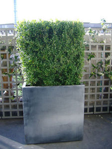 IMAGE'IN by ATELIER SO GREEN - icc60 - gamme matiere - finition zinc - Flower Container