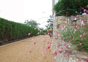 DANIEL MOQUET Signe vos Allées -  - Landscaped Garden