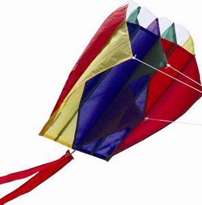 La Maison Du Cerf-Volant -  - Kite