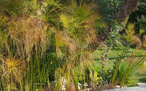 FLORIAN DEGROISE -  - Landscaped Garden
