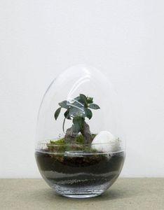 GREEN FACTORY - jurassic lab large - Terrarium Garden Under Glass