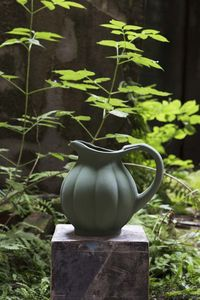 MANUFACTURE DE DIGOIN - citrouille - Pitcher