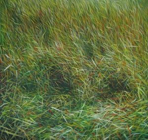 MANUEL CANCEL - _grass - Contemporary Painting