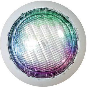Ccei -  - Spotlight