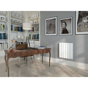 Thermor -  - Inertia Radiator