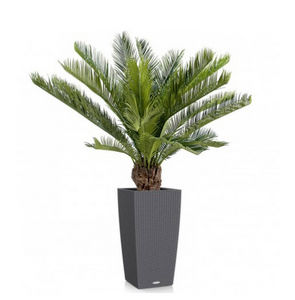 FLORE EVENTS - cycas - Artificial Tree