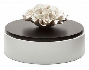 ANOQ -  - Decorated Box