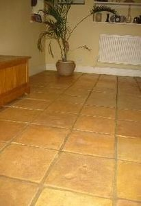 Robus Ceramics -  - Floor Tile