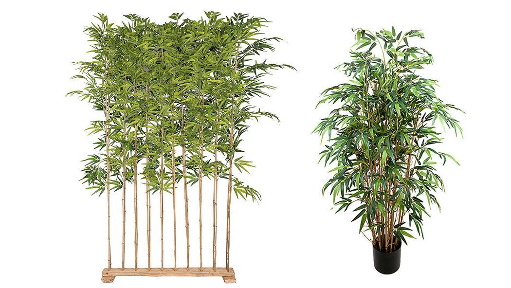 MR PLANT Künstlicher Baum Bäume und Pflanzen Blumen & Düfte  |