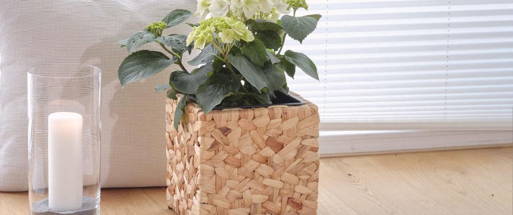 GARTENFREUDE Innen-Jardinière Verschiedene Ziergegenstände Dekorative Gegenstände  |