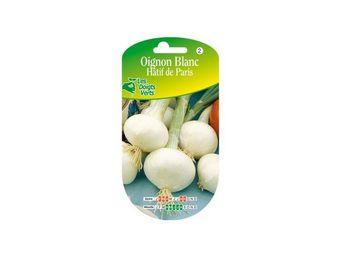 LES DOIGTS VERTS - semence oignon blanc hâtif de paris - Saatgut