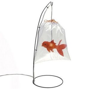 Tung Design - lampe poisson rouge - Tischlampen