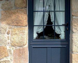 Art et Fenetres -  - Verglaste Eingangstür